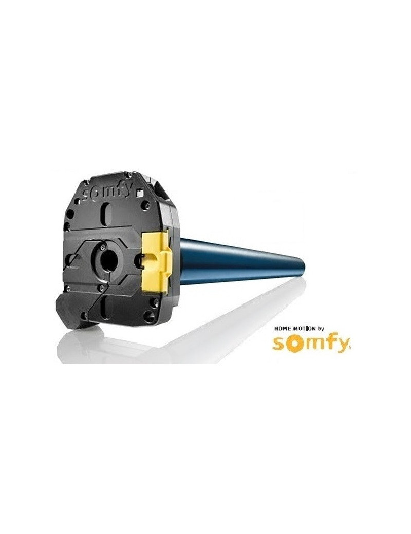 Somfy - Moteur Somfy RDO 60 CSI 70/17 - 1163121 - Porte de garage